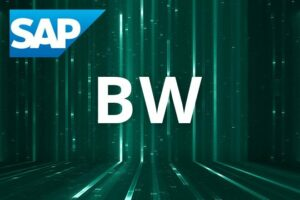 Reporting SAP BW