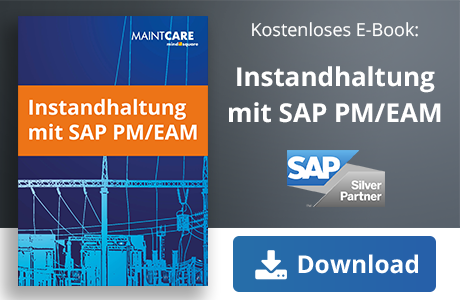 E-Book SAP Instandhaltung